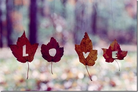 autumn-fall-leaf-leaves-love-favim-com-57001
